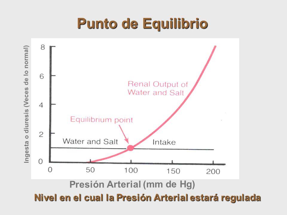 Presión Arterial (mm de Hg) Ingesta o diuresis (Veces de lo normal) Punto de Equilibrio Nivel en el cual la Presión Arterial estará regulada