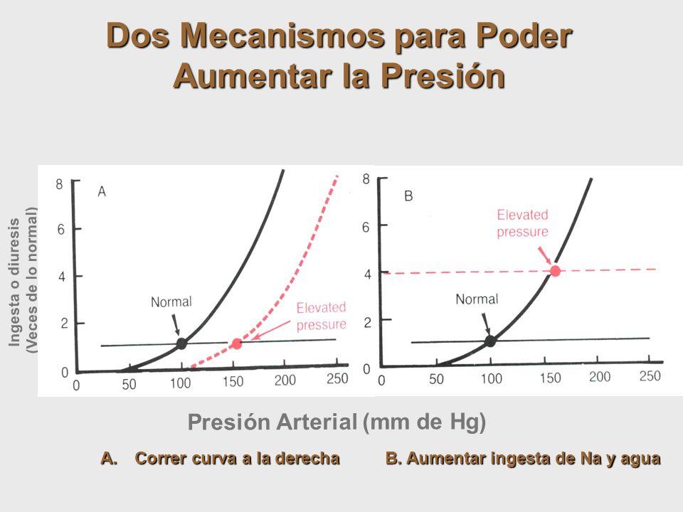 Presión Arterial (mm de Hg) Ingesta o diuresis (Veces de lo normal) Dos Mecanismos para Poder Aumentar la Presión A.Correr curva a la derecha B. Aumen