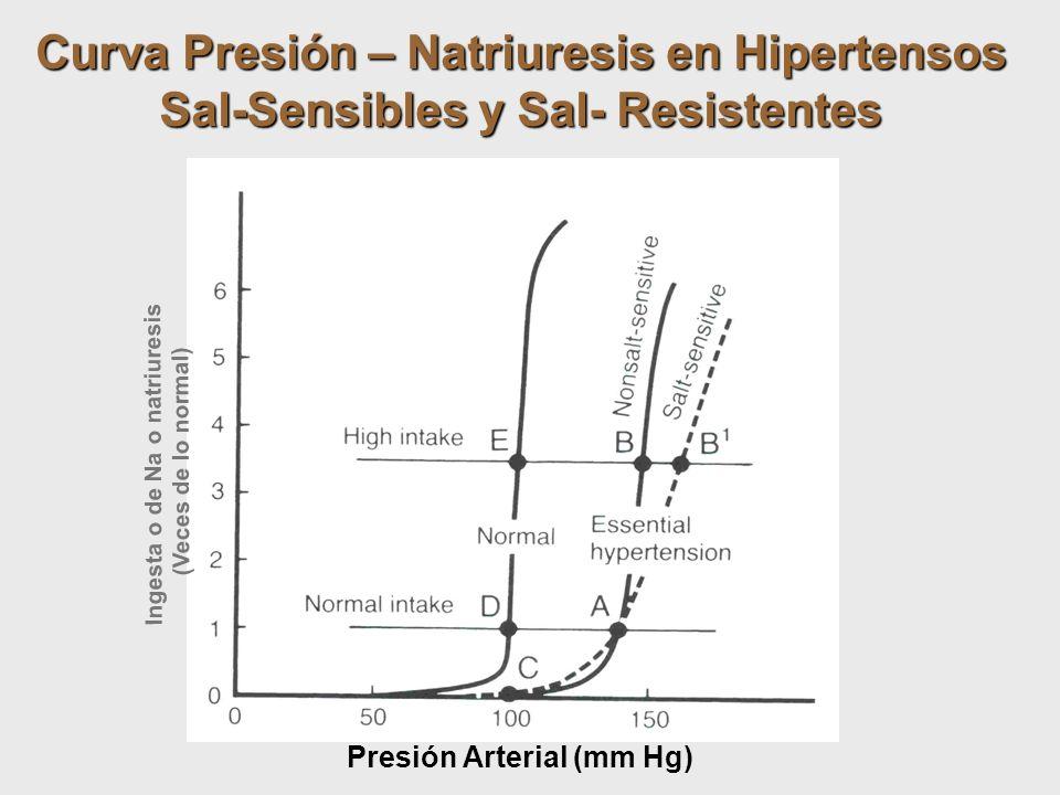 Curva Presión – Natriuresis en Hipertensos Sal-Sensibles y Sal- Resistentes Ingesta o de Na o natriuresis (Veces de lo normal) Presión Arterial (mm Hg