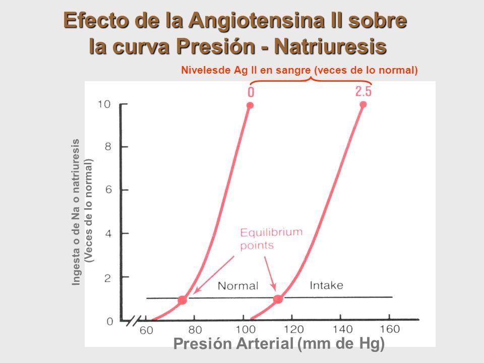 Presión Arterial (mm de Hg) Ingesta o de Na o natriuresis (Veces de lo normal) Efecto de la Angiotensina II sobre la curva Presión - Natriuresis Nivel