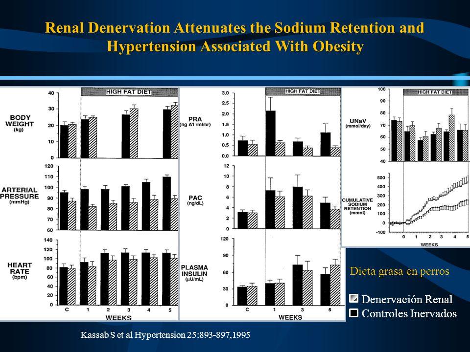 Kassab S et al Hypertension 25:893-897,1995 Dieta grasa en perros Denervación Renal Controles Inervados Renal Denervation Attenuates the Sodium Retent