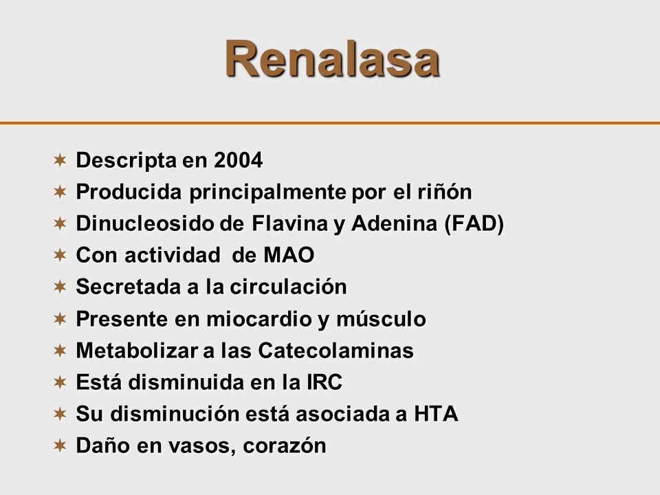 Renalasa Descripta en 2004 Descripta en 2004 Producida principalmente por el riñón Producida principalmente por el riñón Dinucleosido de Flavina y Ade