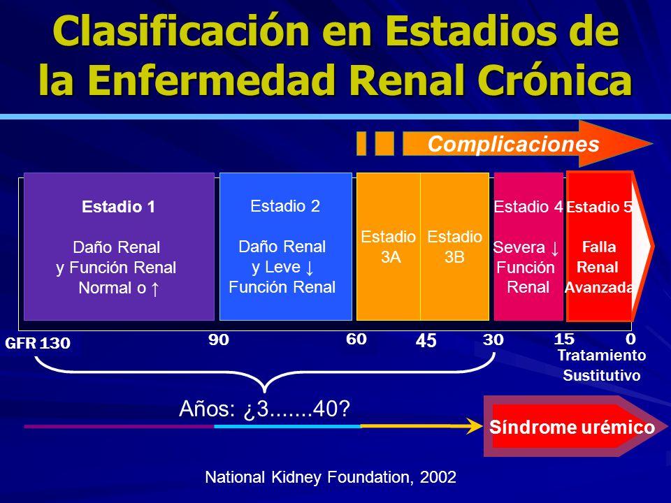 Complicaciones Síndrome urémico Años: ¿3.......40? GFR 130 90 60 30 150 Tratamiento Sustitutivo Estadio 1 Daño Renal y Función Renal Normal o Estadio