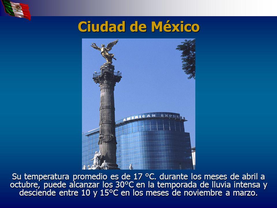 El campus central de la UNAM se localiza en Ciudad Universitaria, en la zona llamada Pedregal de San Ángel.