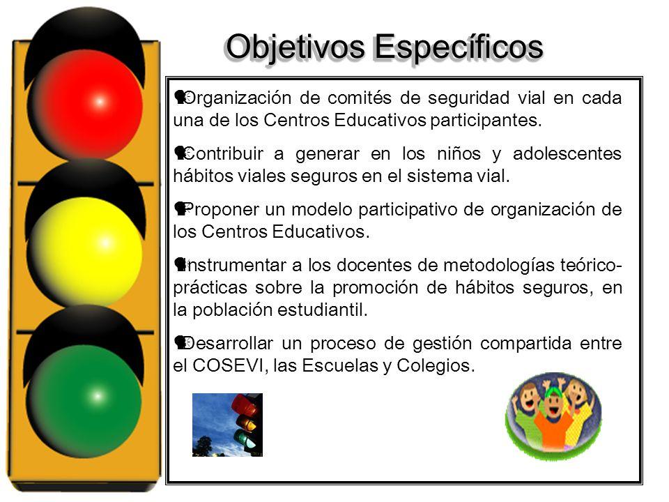 Objetivos Específicos Organización de comités de seguridad vial en cada una de los Centros Educativos participantes.