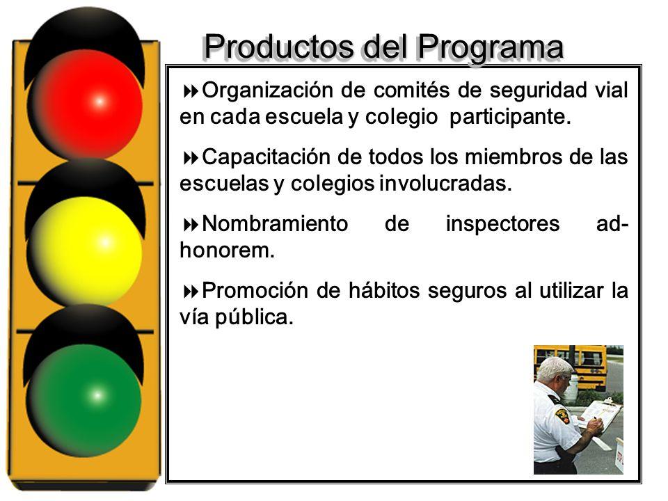 Productos del Programa Organización de comités de seguridad vial en cada escuela y colegio participante.