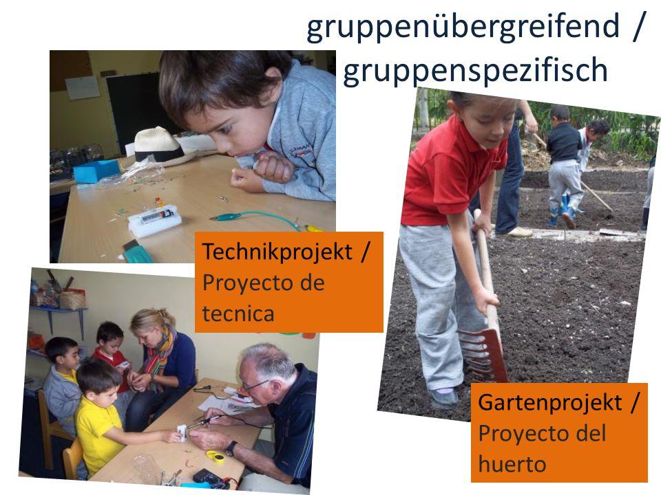 Technikprojekt / Proyecto de tecnica Gartenprojekt / Proyecto del huerto gruppenübergreifend / gruppenspezifisch