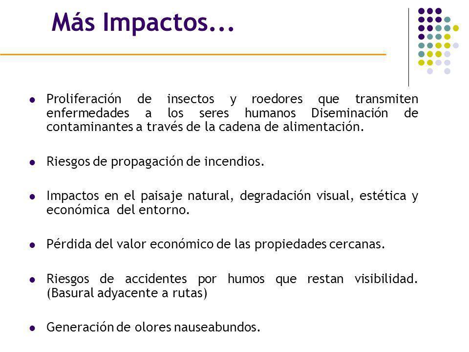 Más Impactos... Proliferación de insectos y roedores que transmiten enfermedades a los seres humanos Diseminación de contaminantes a través de la cade