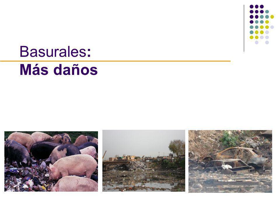 Basurales: Más daños