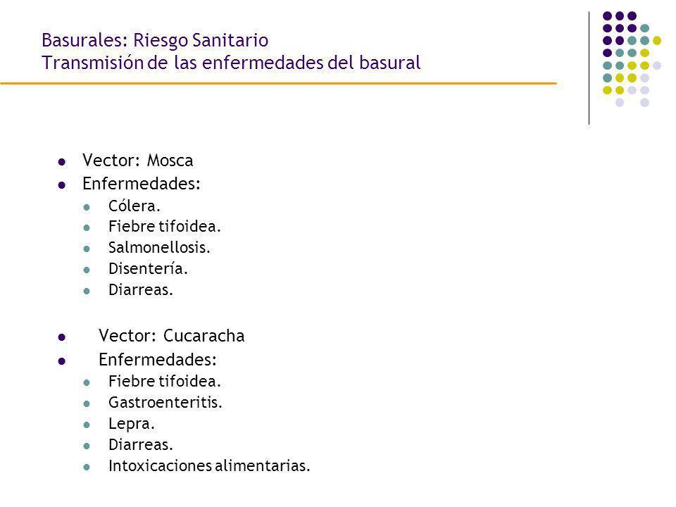 Vector: Mosca Enfermedades: Cólera. Fiebre tifoidea. Salmonellosis. Disentería. Diarreas. Vector: Cucaracha Enfermedades: Fiebre tifoidea. Gastroenter