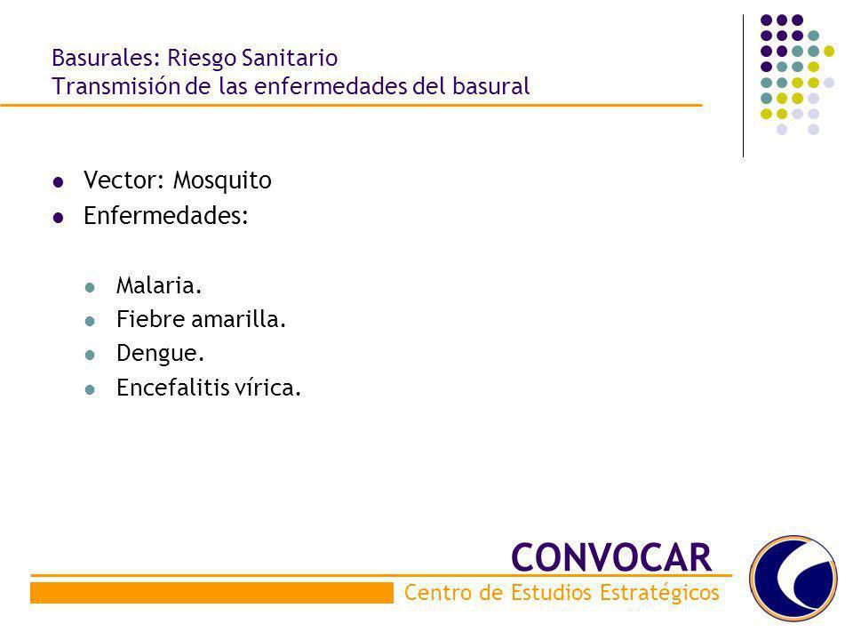 Basurales: Riesgo Sanitario Transmisión de las enfermedades del basural Vector: Mosquito Enfermedades: Malaria. Fiebre amarilla. Dengue. Encefalitis v