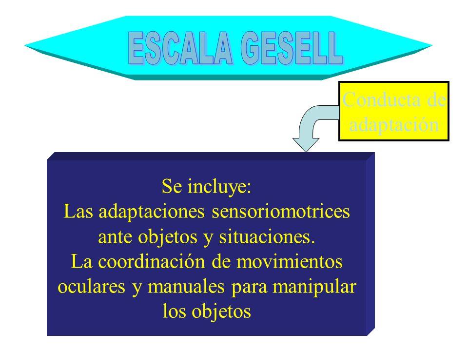 Conducta de adaptación Se incluye: Las adaptaciones sensoriomotrices ante objetos y situaciones. La coordinación de movimientos oculares y manuales pa