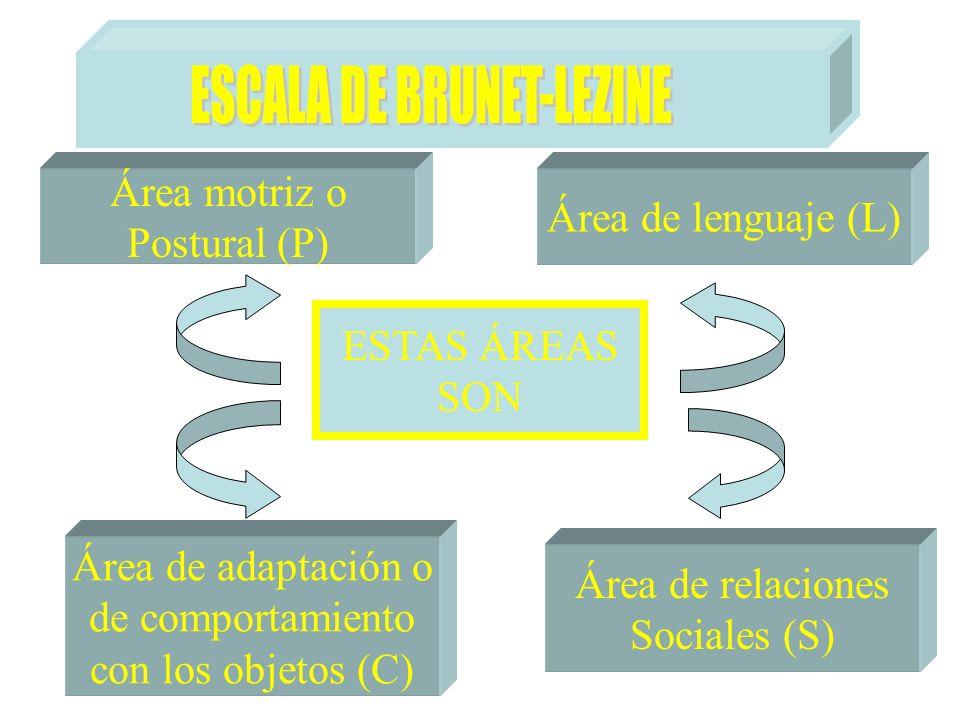 ESTAS ÁREAS SON Área motriz o Postural (P) Área de lenguaje (L) Área de adaptación o de comportamiento con los objetos (C) Área de relaciones Sociales