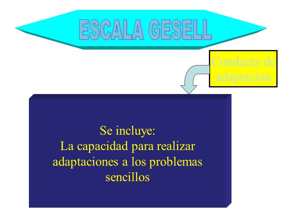 Conducta de adaptación Se incluye: La capacidad para realizar adaptaciones a los problemas sencillos