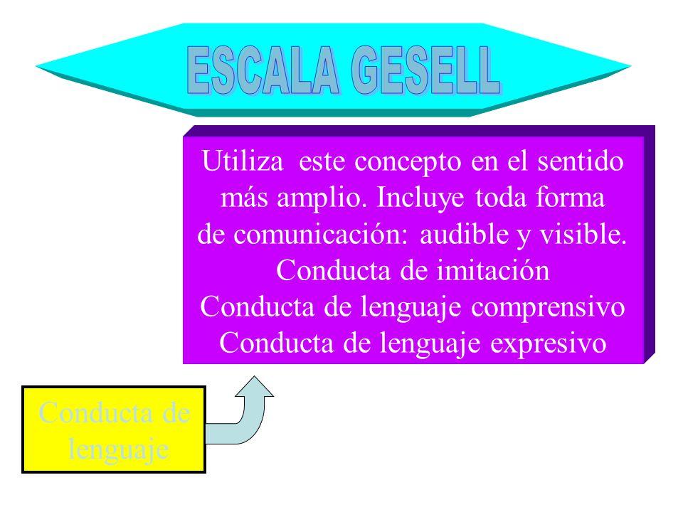 Conducta de lenguaje Utiliza este concepto en el sentido más amplio. Incluye toda forma de comunicación: audible y visible. Conducta de imitación Cond