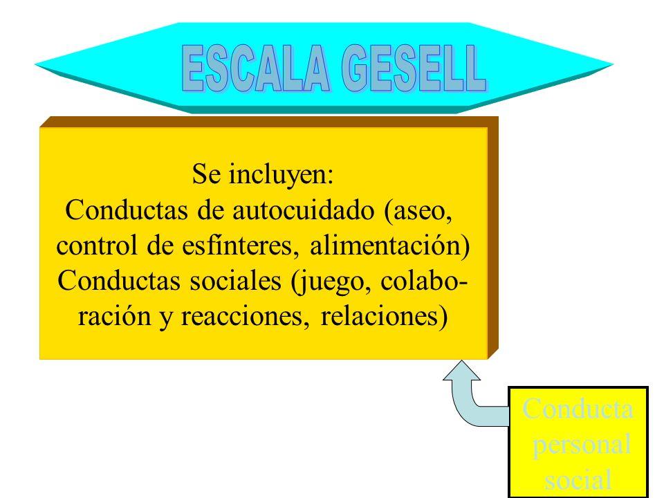 Conducta personal social Se incluyen: Conductas de autocuidado (aseo, control de esfínteres, alimentación) Conductas sociales (juego, colabo- ración y
