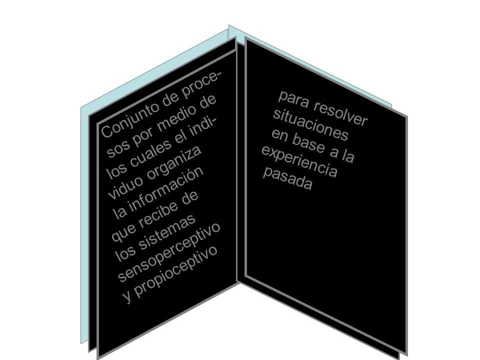 Conjunto de proce- sos por medio de los cuales el indi- viduo organiza la información que recibe de los sistemas sensoperceptivo y propioceptivo para