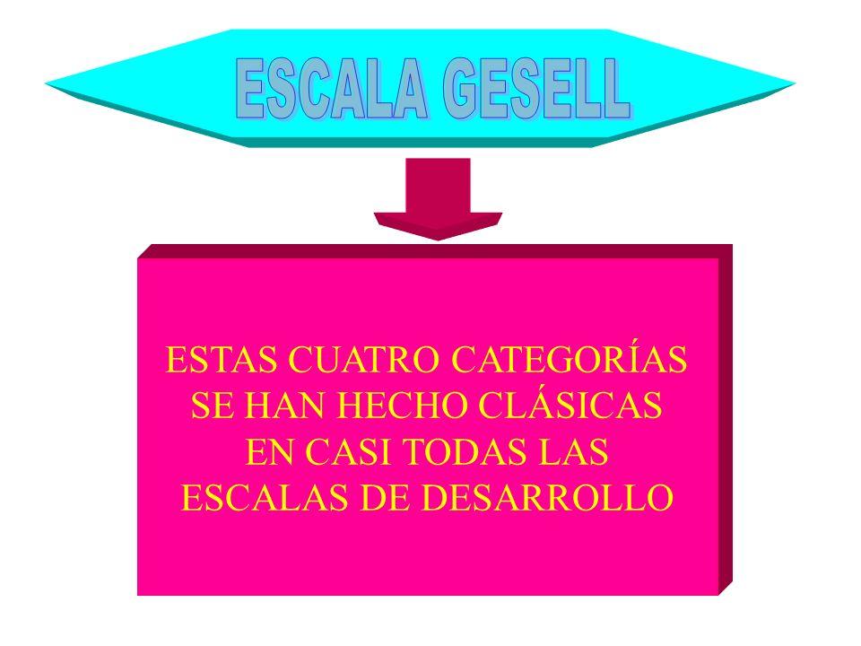 ESTAS CUATRO CATEGORÍAS SE HAN HECHO CLÁSICAS EN CASI TODAS LAS ESCALAS DE DESARROLLO