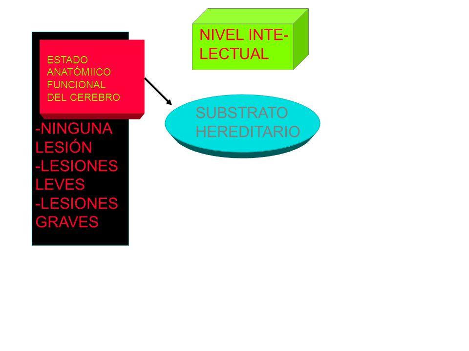 ESTADO ANATÓMIICO FUNCIONAL DEL CEREBRO SUBSTRATO HEREDITARIO NIVEL INTE- LECTUAL -NINGUNA LESIÓN -LESIONES LEVES -LESIONES GRAVES