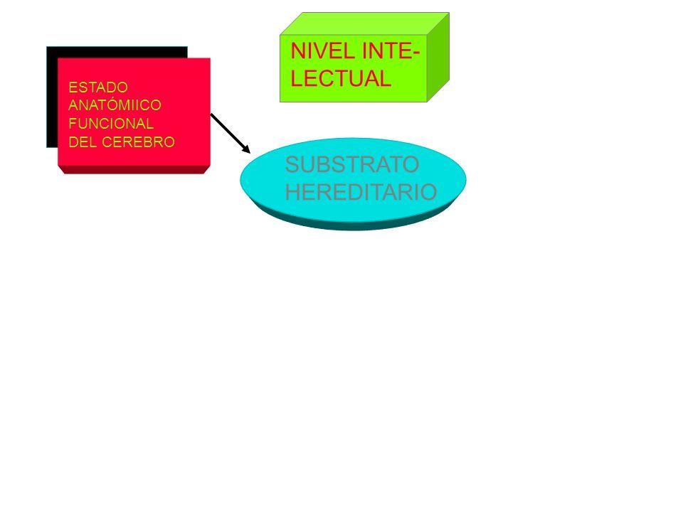 ESTADO ANATÓMIICO FUNCIONAL DEL CEREBRO SUBSTRATO HEREDITARIO NIVEL INTE- LECTUAL