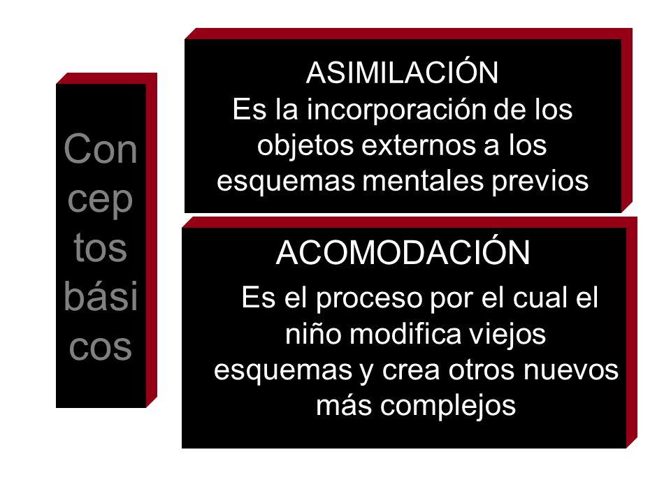 ASIMILACIÓN Es la incorporación de los objetos externos a los esquemas mentales previos ACOMODACIÓN Es el proceso por el cual el niño modifica viejos
