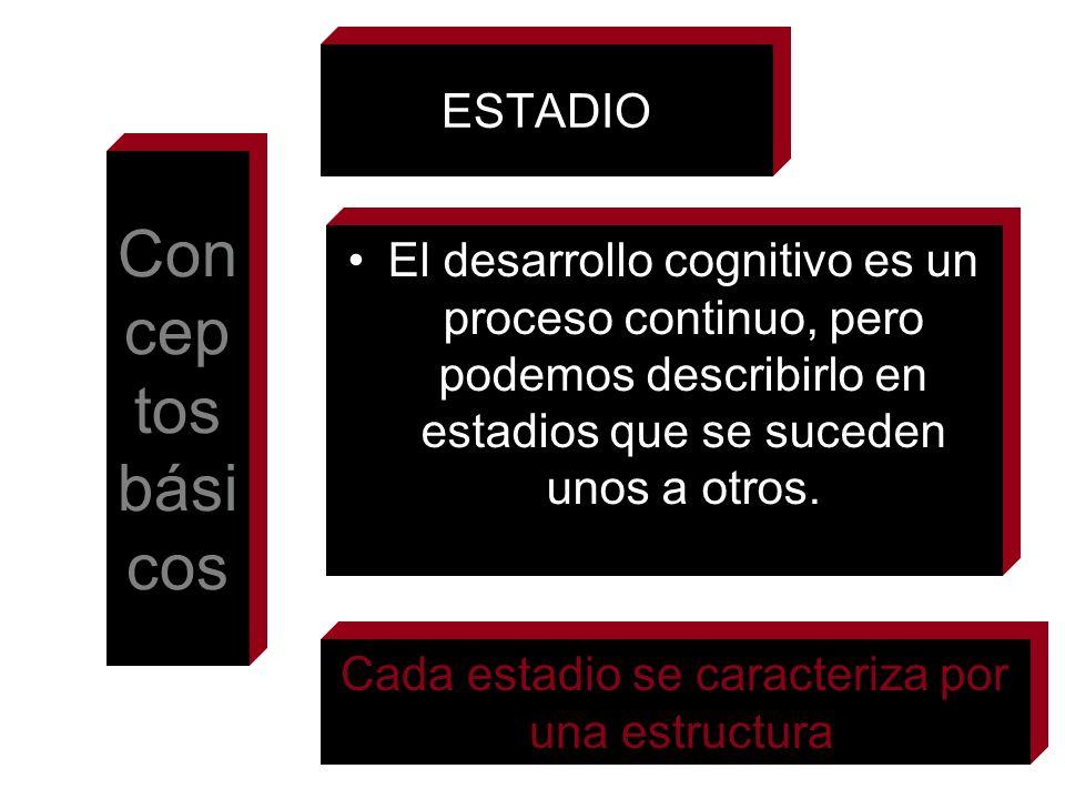 ESTADIO El desarrollo cognitivo es un proceso continuo, pero podemos describirlo en estadios que se suceden unos a otros. Con cep tos bási cos Cada es