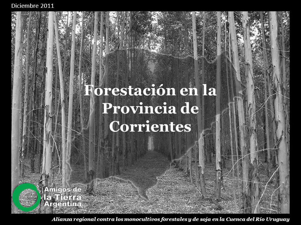 Forestación en la Provincia de Corrientes Alianza regional contra los monocultivos forestales y de soja en la Cuenca del Río Uruguay Diciembre 2011