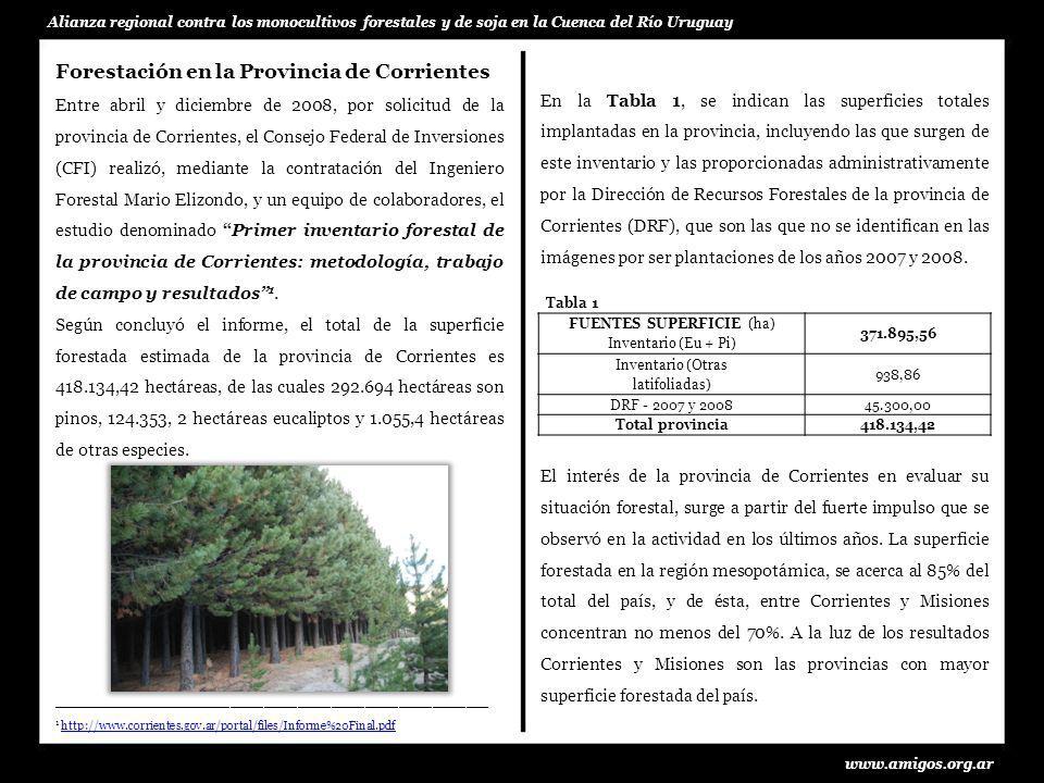 Forestación en la Provincia de Corrientes Entre abril y diciembre de 2008, por solicitud de la provincia de Corrientes, el Consejo Federal de Inversio