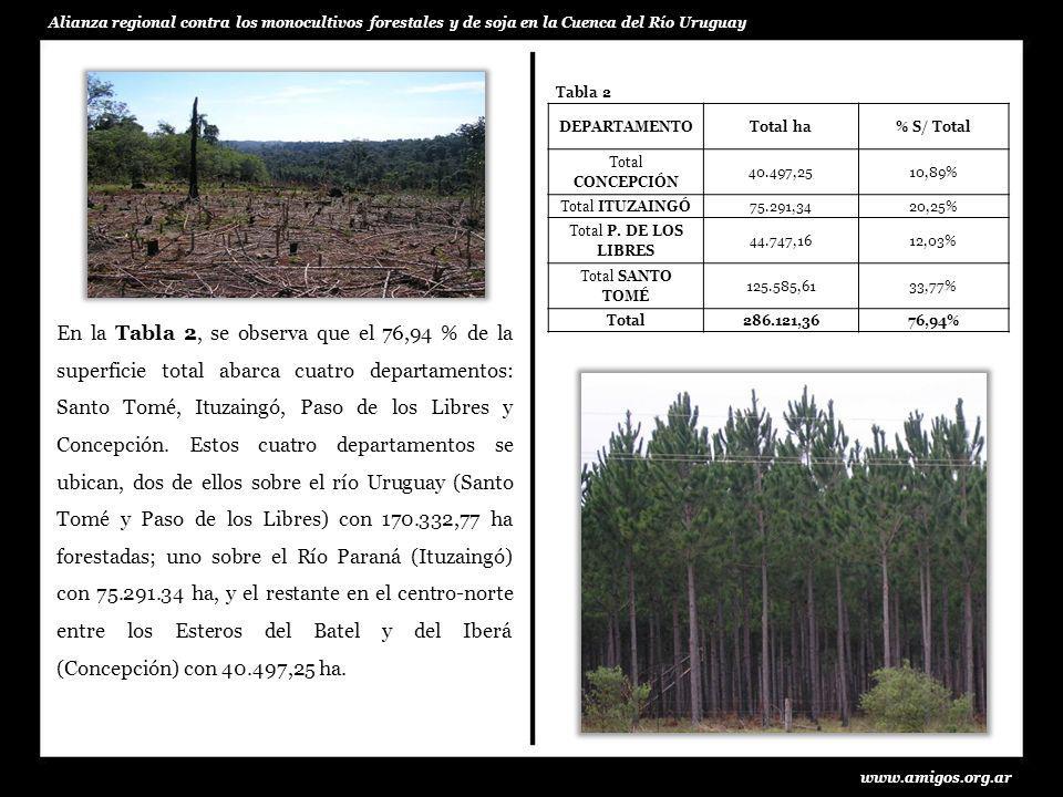 En la Tabla 2, se observa que el 76,94 % de la superficie total abarca cuatro departamentos: Santo Tomé, Ituzaingó, Paso de los Libres y Concepción. E