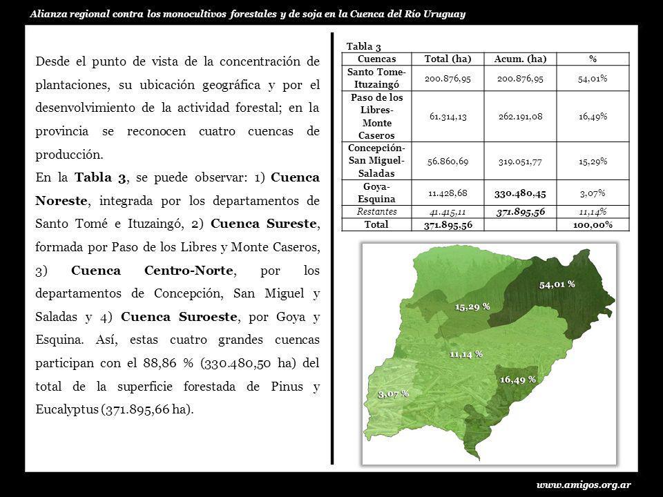 Desde el punto de vista de la concentración de plantaciones, su ubicación geográfica y por el desenvolvimiento de la actividad forestal; en la provinc