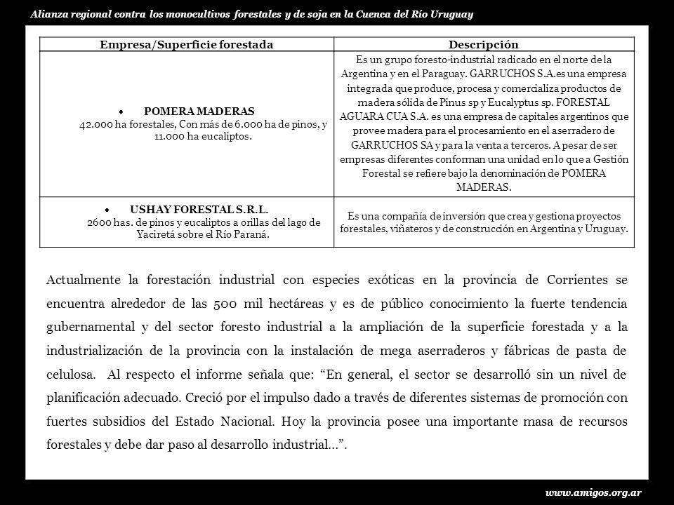 www.amigos.org.ar Alianza regional contra los monocultivos forestales y de soja en la Cuenca del Río Uruguay Empresa/Superficie forestadaDescripción P