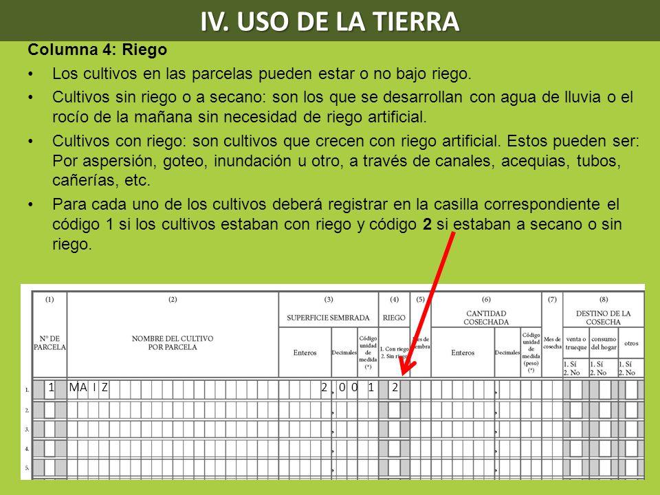 IV. USO DE LA TIERRA Columna 4: Riego Los cultivos en las parcelas pueden estar o no bajo riego. Cultivos sin riego o a secano: son los que se desarro