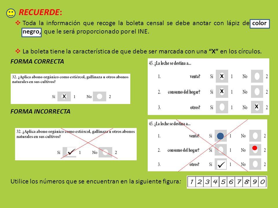 RECUERDE: Toda la información que recoge la boleta censal se debe anotar con lápiz de color negro, que le será proporcionado por el INE. La boleta tie