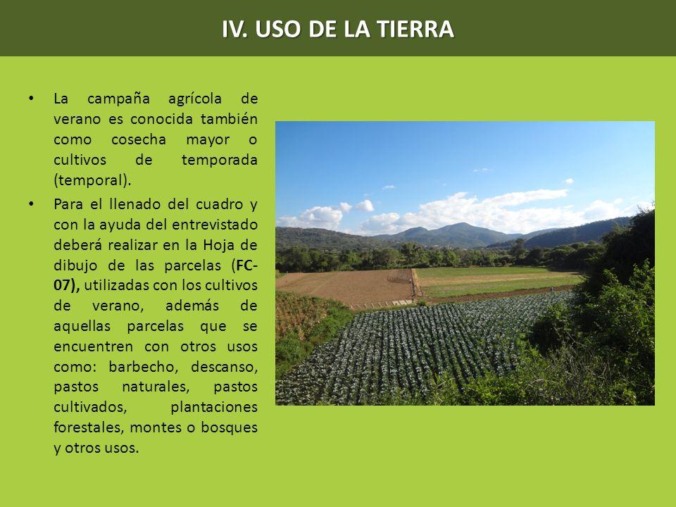 IV. USO DE LA TIERRA La campaña agrícola de verano es conocida también como cosecha mayor o cultivos de temporada (temporal). Para el llenado del cuad
