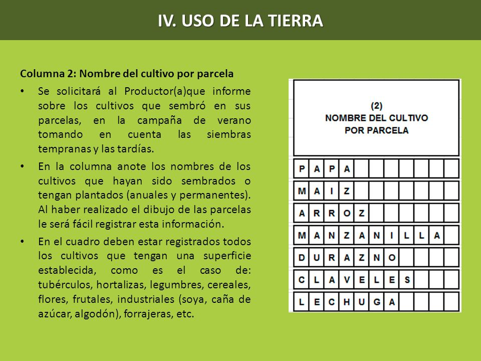 IV. USO DE LA TIERRA Columna 2: Nombre del cultivo por parcela Se solicitará al Productor(a)que informe sobre los cultivos que sembró en sus parcelas,