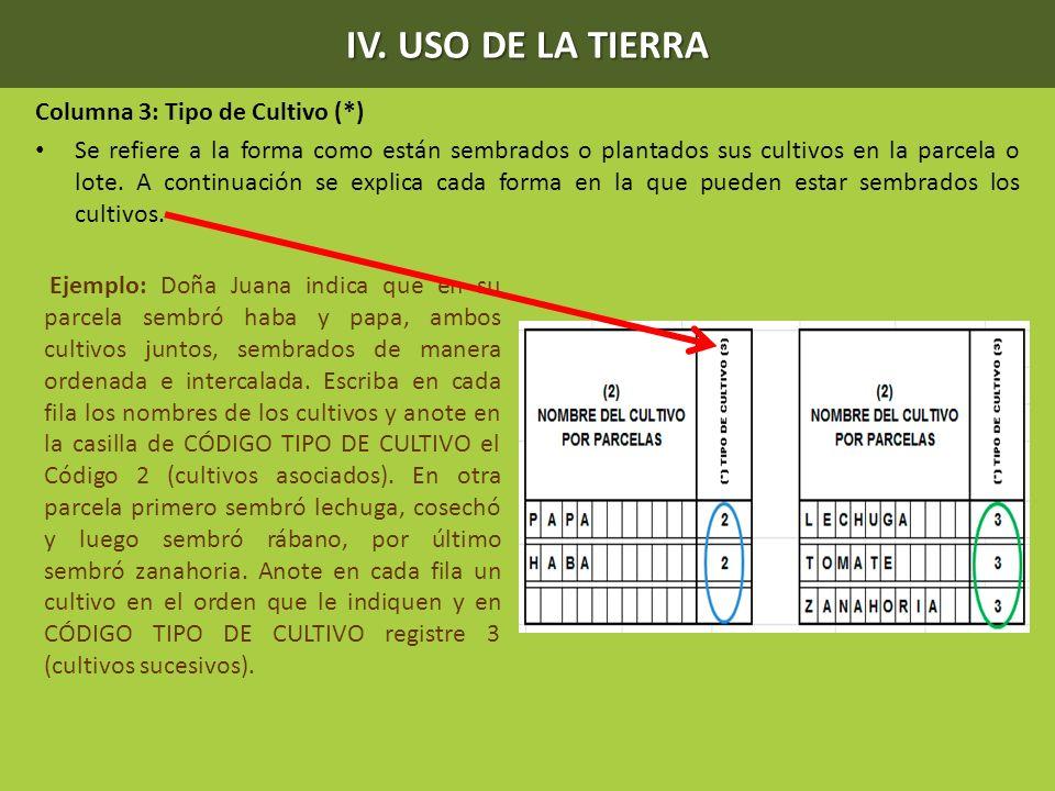 IV. USO DE LA TIERRA Columna 3: Tipo de Cultivo (*) Se refiere a la forma como están sembrados o plantados sus cultivos en la parcela o lote. A contin