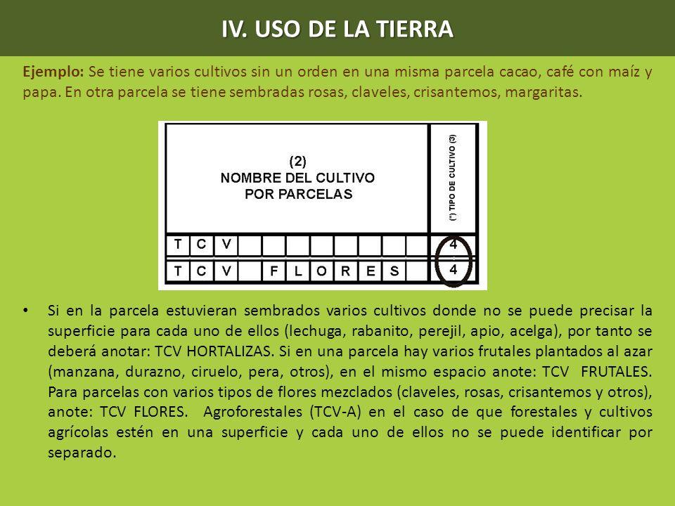 Ejemplo: Se tiene varios cultivos sin un orden en una misma parcela cacao, café con maíz y papa. En otra parcela se tiene sembradas rosas, claveles, c
