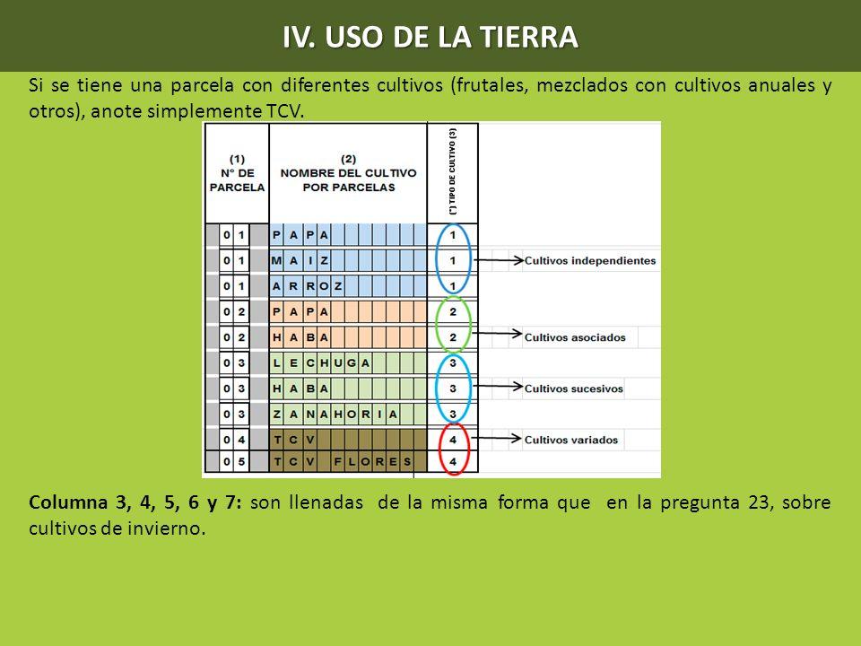 IV. USO DE LA TIERRA Si se tiene una parcela con diferentes cultivos (frutales, mezclados con cultivos anuales y otros), anote simplemente TCV. Column