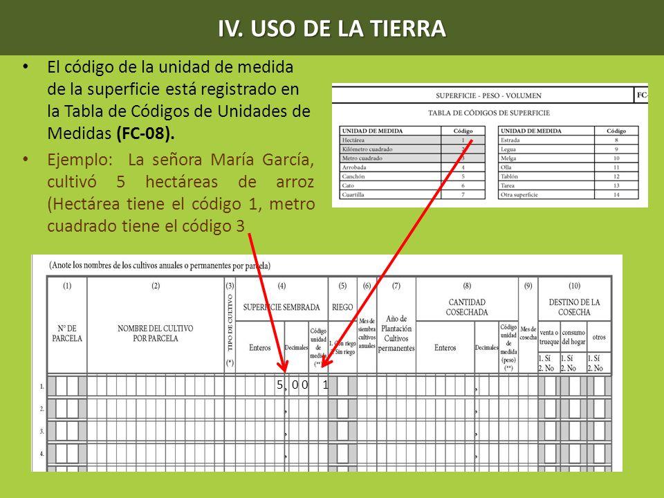 IV. USO DE LA TIERRA El código de la unidad de medida de la superficie está registrado en la Tabla de Códigos de Unidades de Medidas (FC-08). Ejemplo: