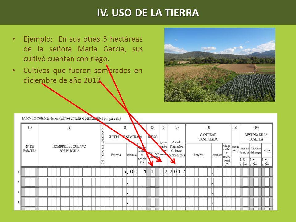 IV. USO DE LA TIERRA Ejemplo: En sus otras 5 hectáreas de la señora María García, sus cultivó cuentan con riego. Cultivos que fueron sembrados en dici