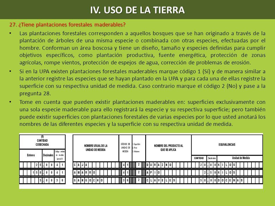 IV. USO DE LA TIERRA 27. ¿Tiene plantaciones forestales maderables? Las plantaciones forestales corresponden a aquellos bosques que se han originado a