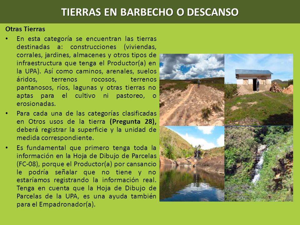 TIERRAS EN BARBECHO O DESCANSO Otras Tierras En esta categoría se encuentran las tierras destinadas a: construcciones (viviendas, corrales, jardines,