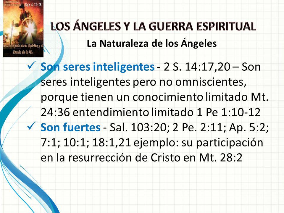 Son seres inteligentes - 2 S.