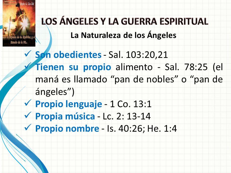 Son obedientes - Sal.103:20,21 Tienen su propio alimento - Sal.