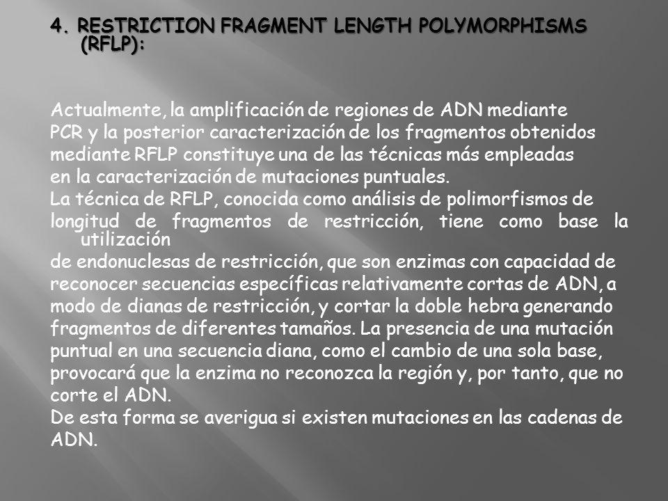 4. RESTRICTION FRAGMENT LENGTH POLYMORPHISMS (RFLP): Actualmente, la amplificación de regiones de ADN mediante PCR y la posterior caracterización de l