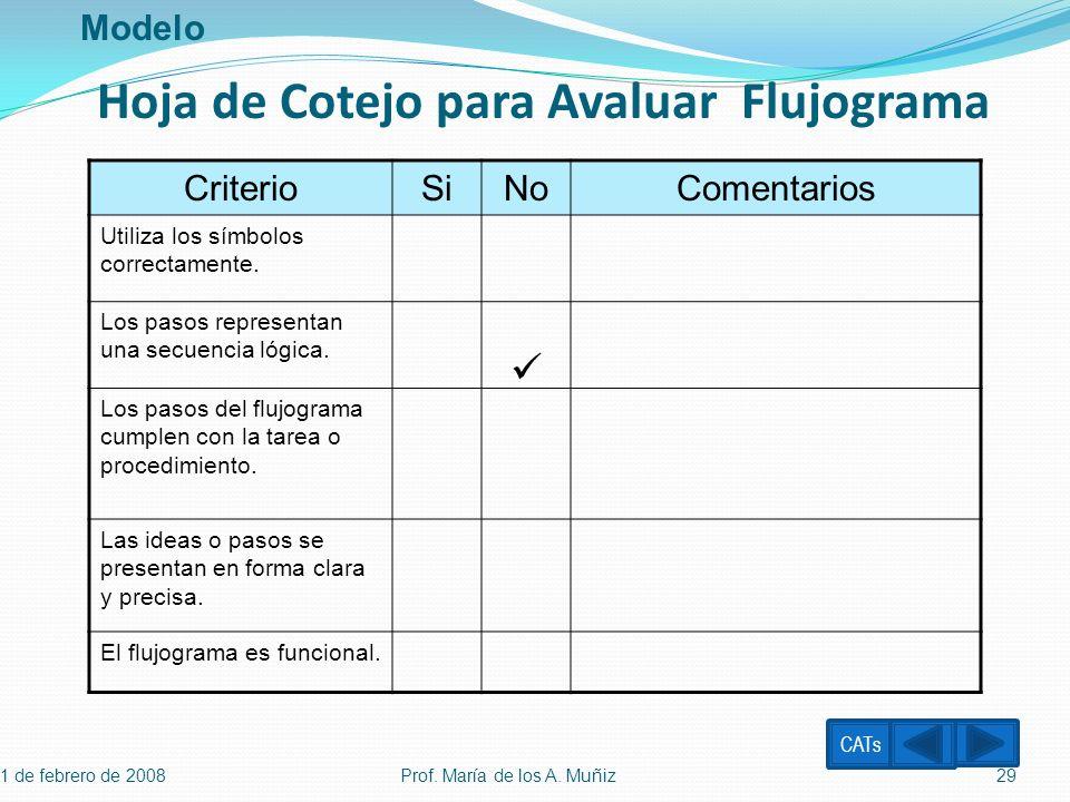 1 de febrero de 2008 Prof. María de los A. Muñiz29 CriterioSiNoComentarios Utiliza los símbolos correctamente. Los pasos representan una secuencia lóg