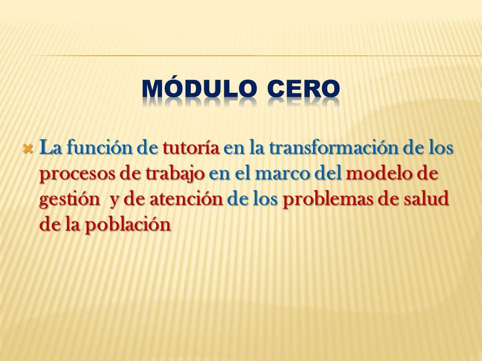 La función de tutoría en la transformación de los procesos de trabajo en el marco del modelo de gestión y de atención de los problemas de salud de la