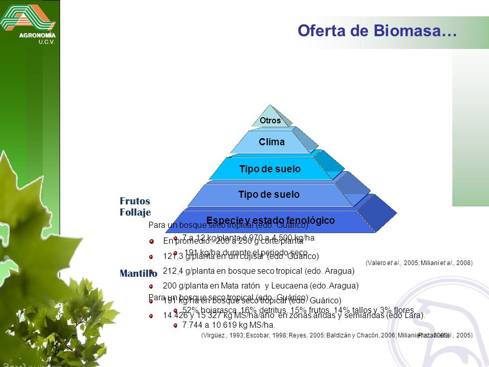 AGRONOMÍA U.C.V. Oferta de Biomasa… Especie y estado fenológico Tipo de suelo Clima Otros Follaje En promedio: 200 a 250 g corte/planta 121,3 g/planta