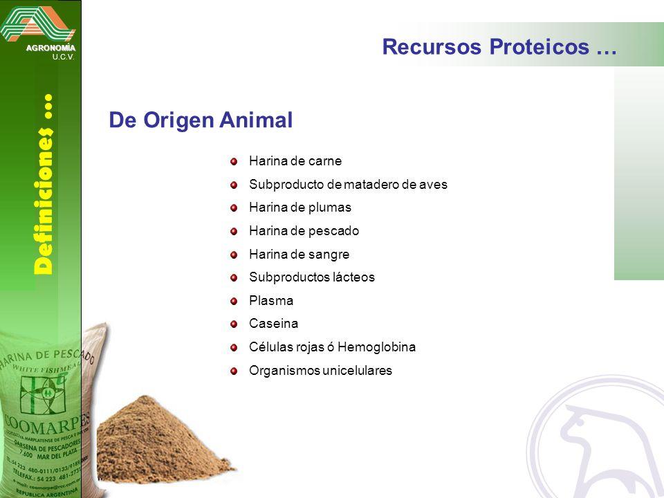AGRONOMÍA U.C.V. Definiciones … Recursos Proteicos … De Origen Animal Harina de carne Subproducto de matadero de aves Harina de plumas Harina de pesca