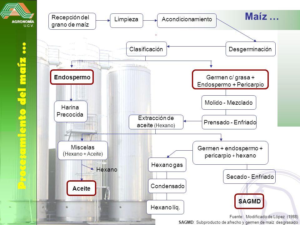Hexano gas Condensado Hexano líq. AGRONOMÍA U.C.V. Procesamiento del maíz … Recepción del grano de maíz Secado - Enfriado LimpiezaAcondicionamiento De